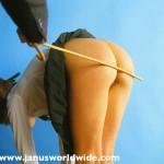Janus 49 spanking